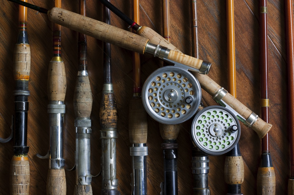 Different Types of Fly Rods Side By Side