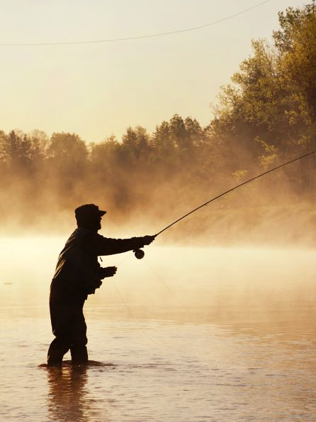 Standard Fly Cast Silhouette Tall