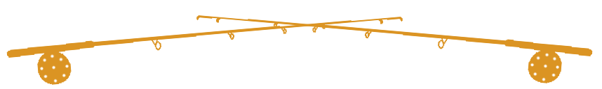 2 Fly Rods Divider