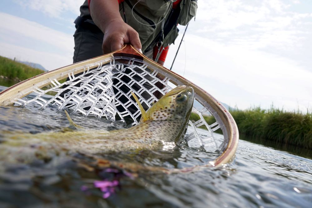 Wooden Handle A Great Rubber Net For Fly Fishing