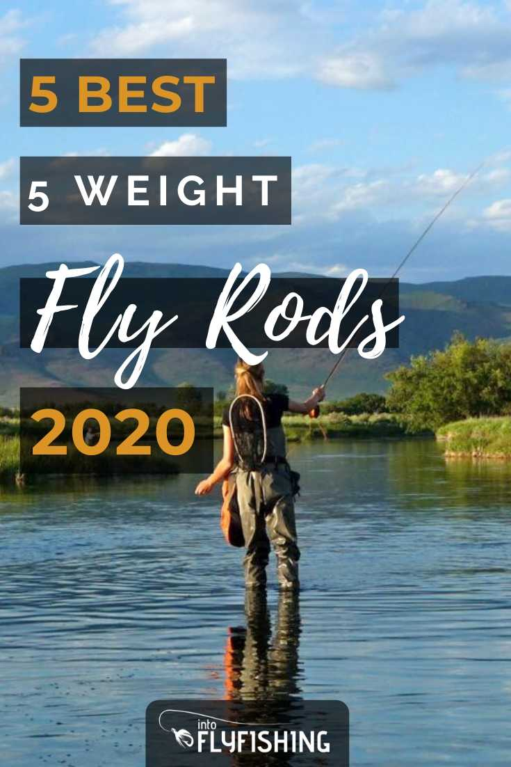 Best 5 Weight Fly Rods