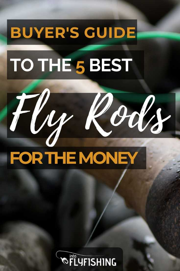 Buyer's Guide to the 5 Best Fly Rods For The Money