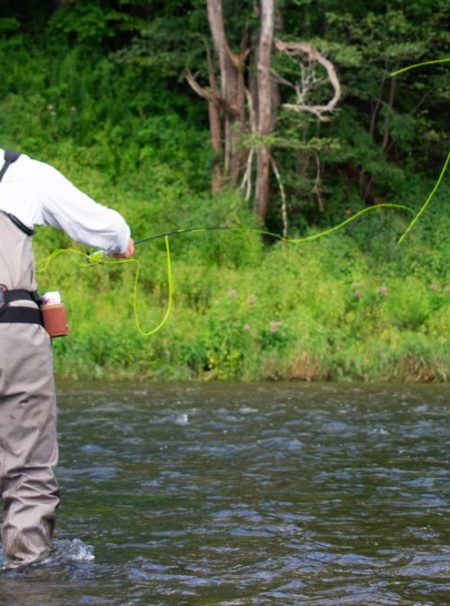 Delaware River Fly Fishing in New York State