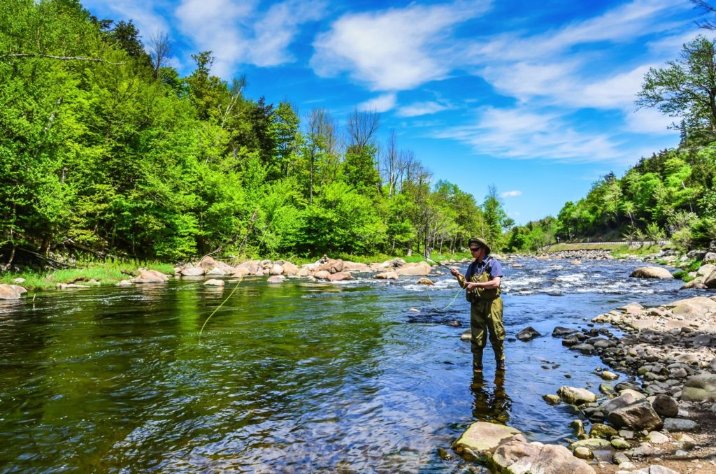 Fly Fishing in New York Featured Image River
