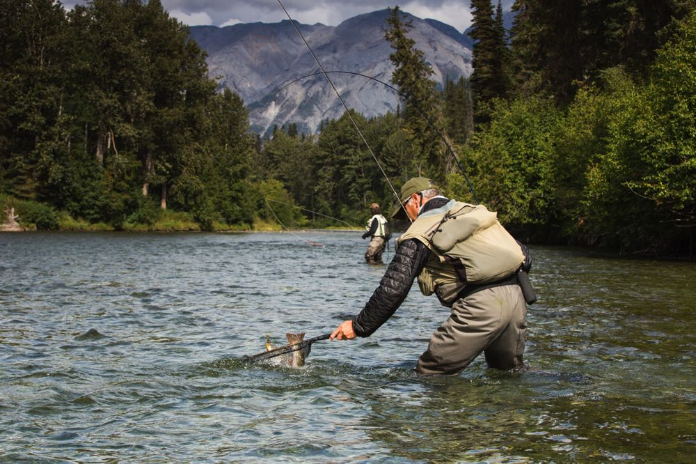 Man Netting a fish fly fishing