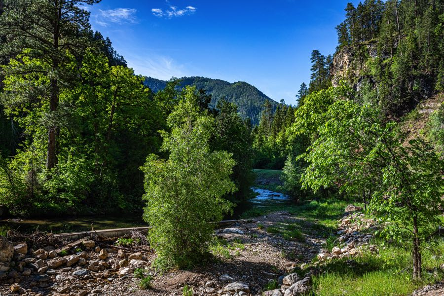 View of Spearfish Creek - Great place for Fishing in South Dakota