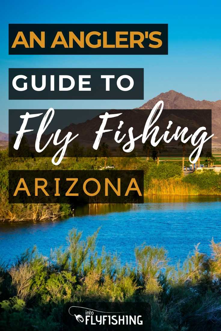 An Angler's Guide To Fly Fishing Arizona