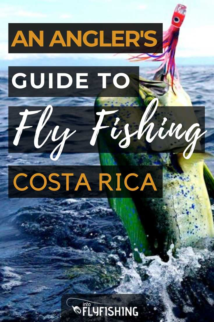 An Angler's Guide To Fly Fishing in Costa Rica