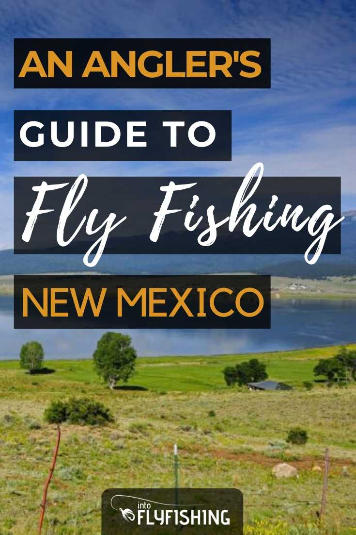 An Angler's Guide To Fly Fishing in New Mexico