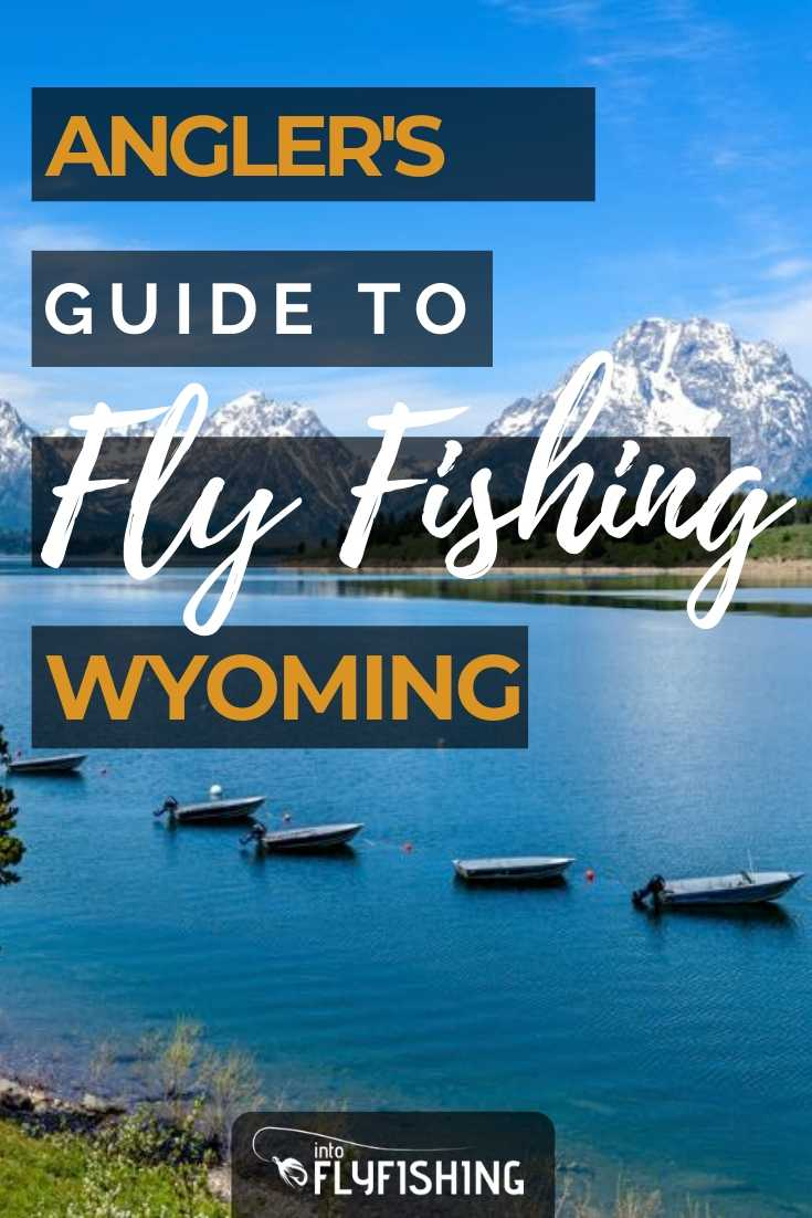 Angler's Guide To Fly Fishing Wyoming