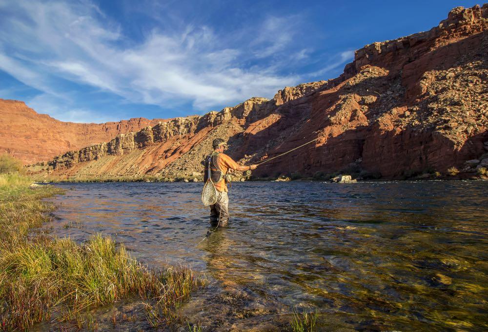 Colorado River Fly Fishing Arizona