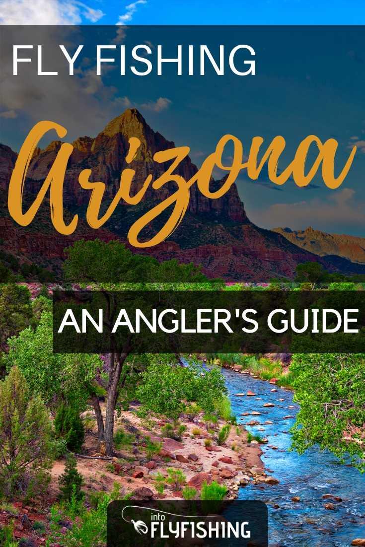 Fly Fishing Arizona: An Angler's Guide