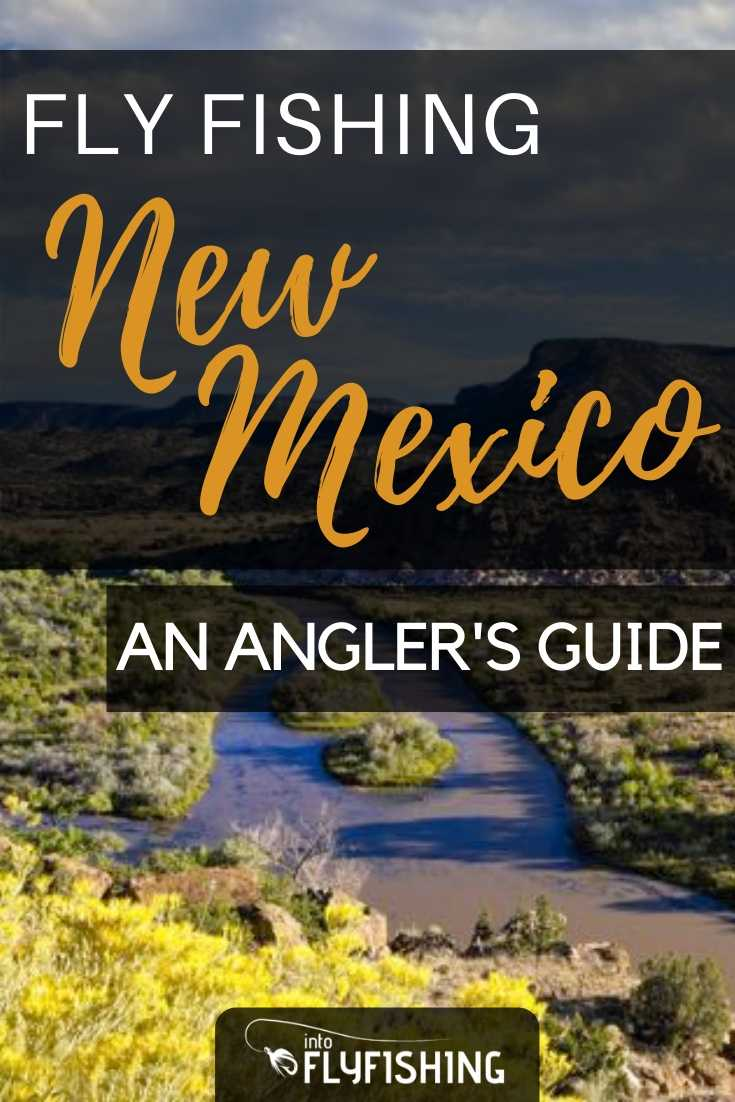 Fly Fishing New Mexico: An Angler's Guide