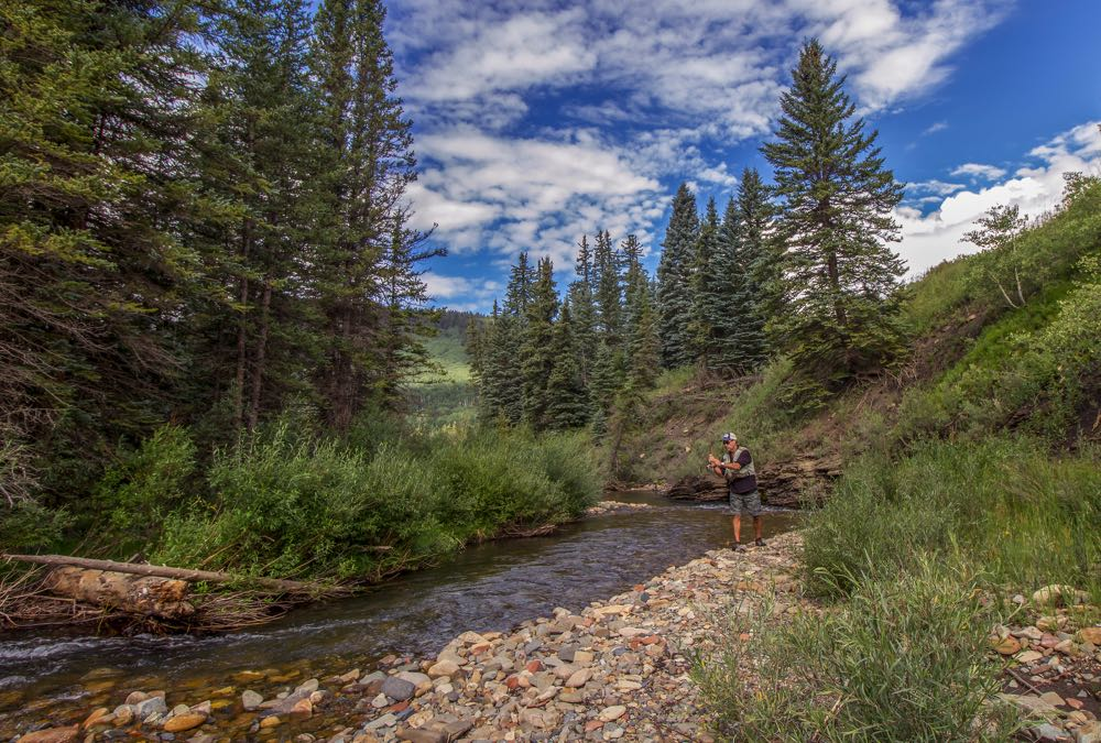 Fly Fishing On a Small Stream