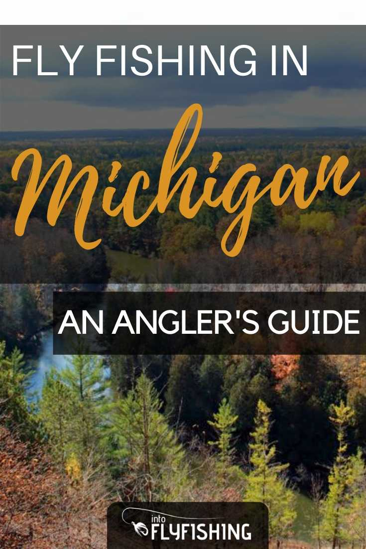 Fly Fishing in Michigan: An Angler's Guide