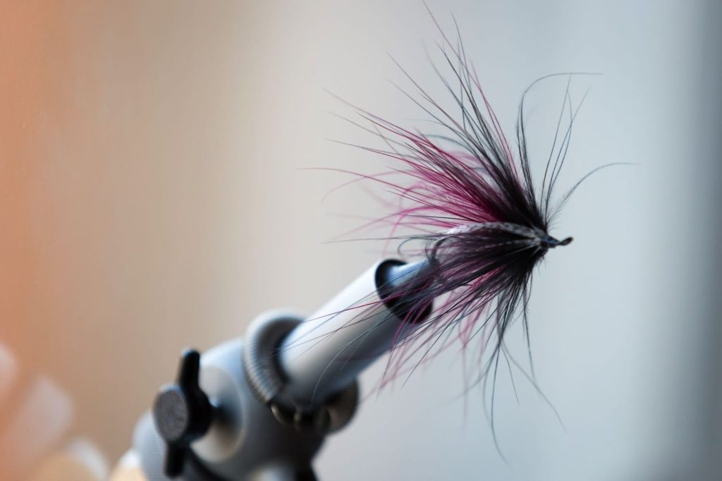 Fly Tying Fly in a Vice