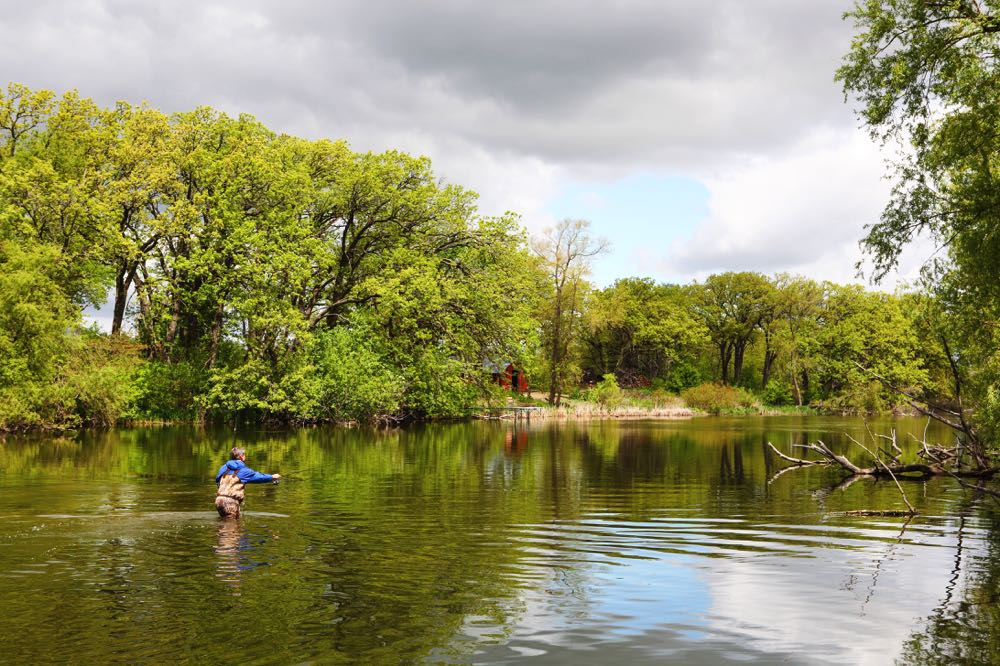 Man Fly Fishing on a river in Wisconsin