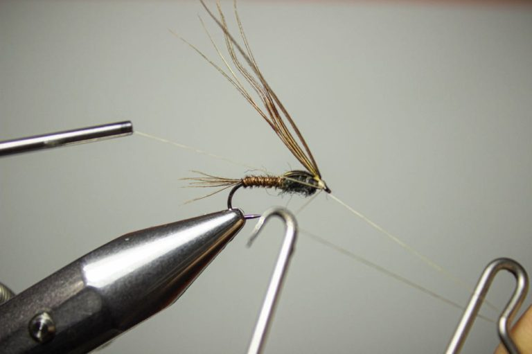 learn to tie a pheasant tail nymph step 10
