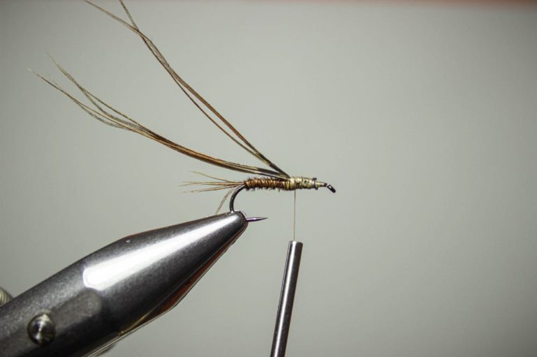 fly tying tutorial pheasant tail nymph step 7