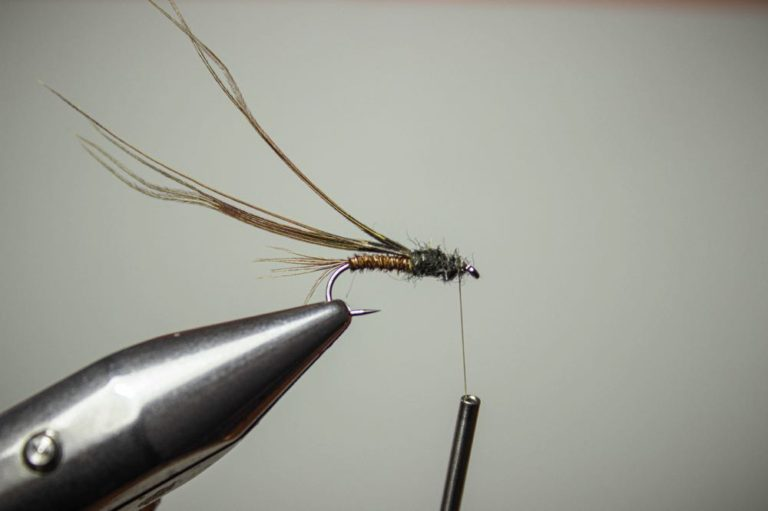 fly tying tutorial pheasant tail nymph fly step 8