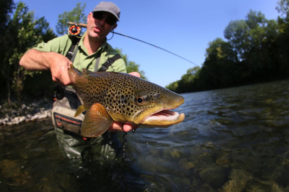 Professional Fly Fishing With Waders On