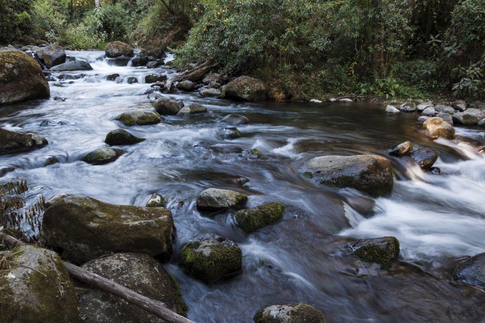 Savegre river costa rica