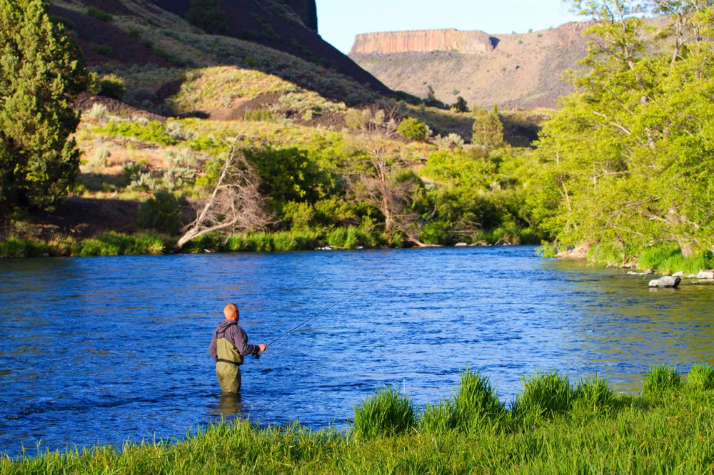 Summer Fly Fishing in Oregon
