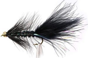 wooly bugger for fly fishing trout