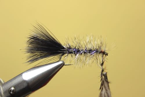 tying wooly bugger with hackle