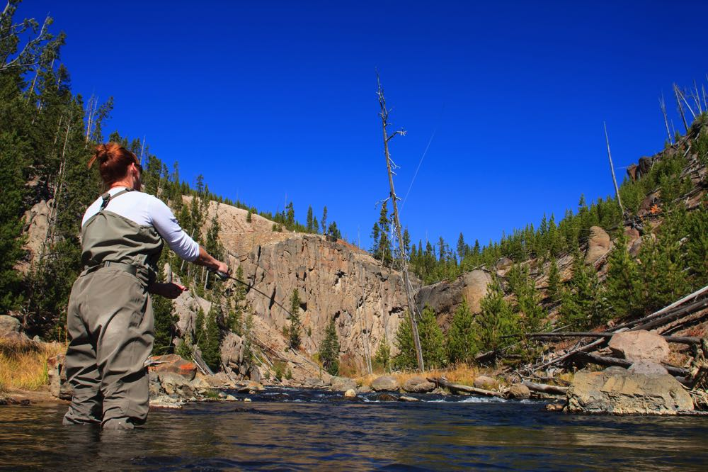 Yellowstone River woman fly fishing in Wyoming