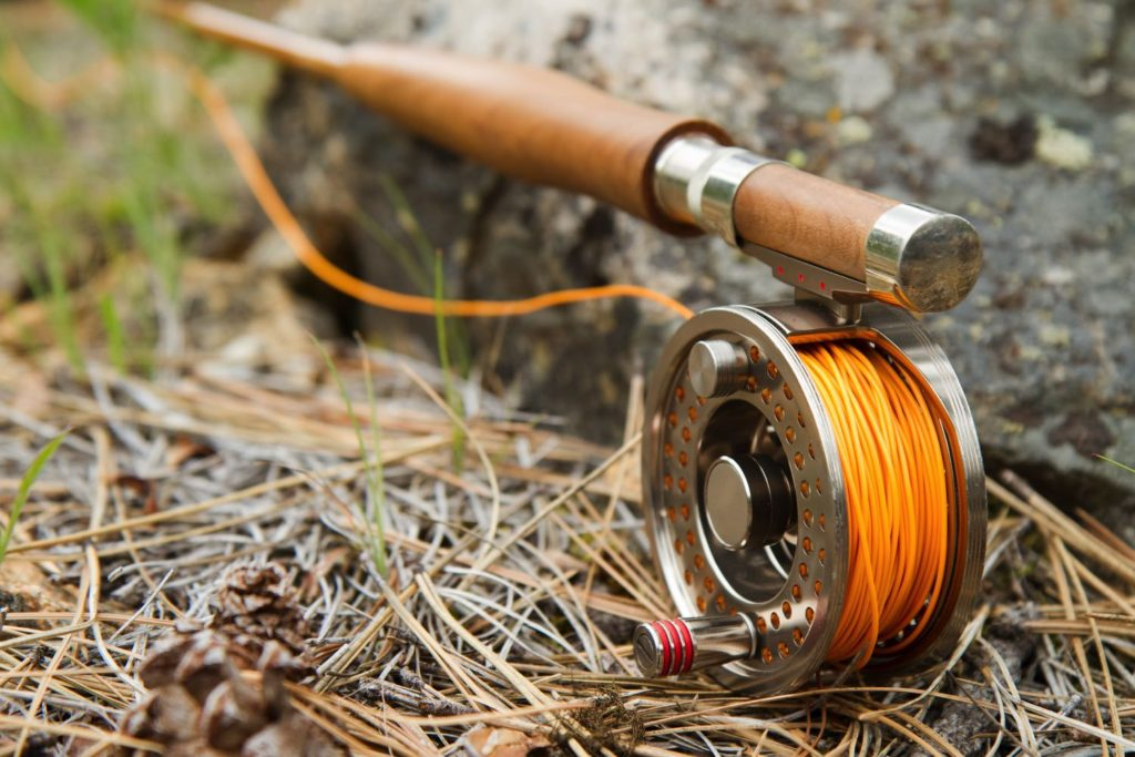 Best Fly Line For Trout