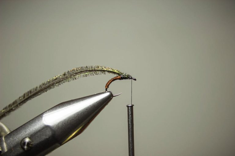 learn to tie a brassie fly step 5