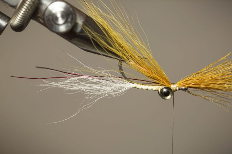 Learn to tie a Clouser Minnow Fly Step 11