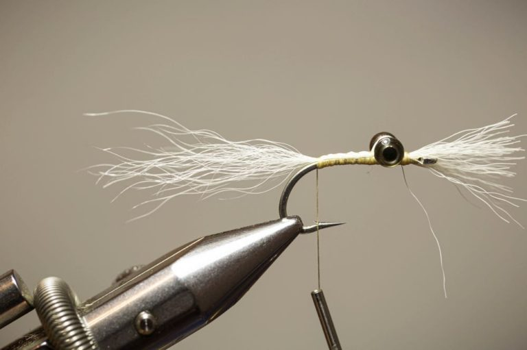 Clouser Minnow Fly Step 8