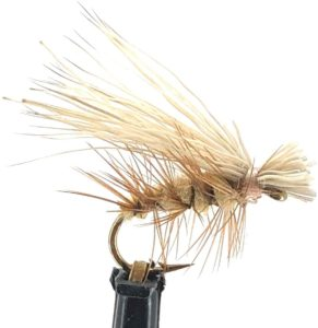Elk Hair Caddis trout fly