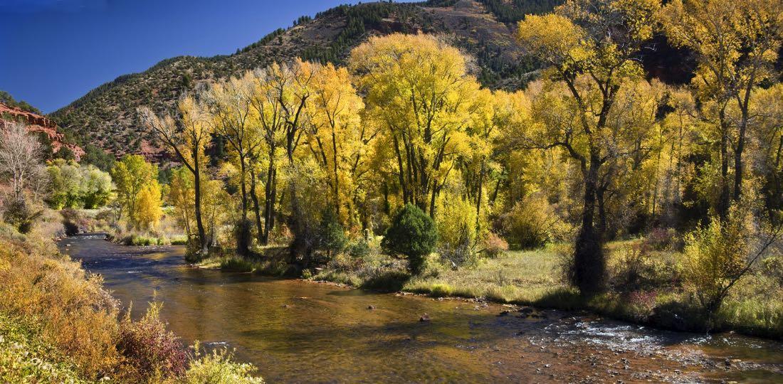 Frying Pan River Colorado