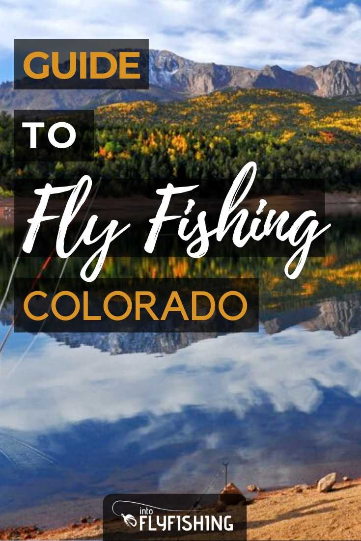 Guide To Fly Fishing Colorado