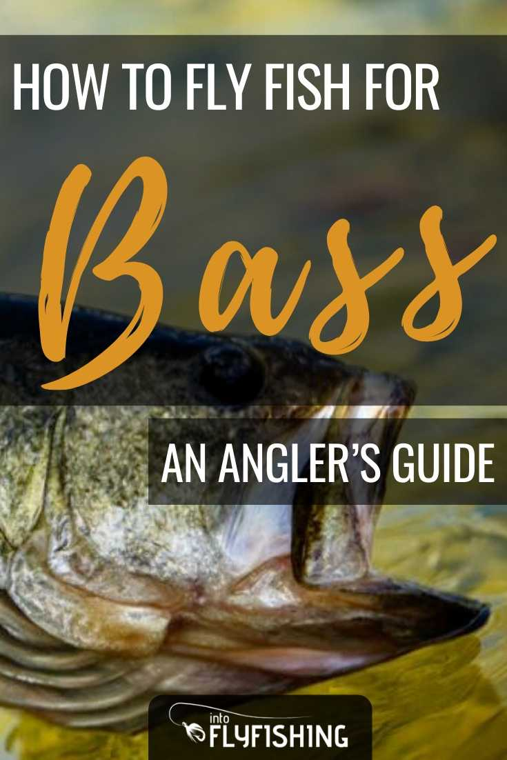 How To Fly Fish For Bass An Angler's Guide