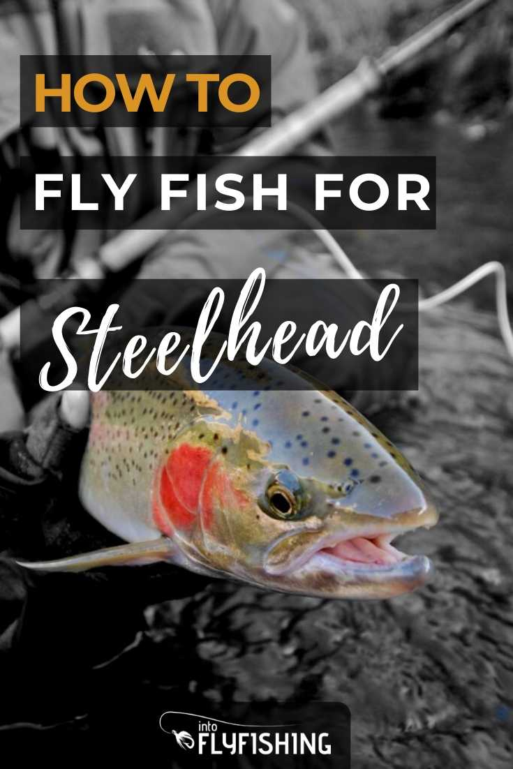 How To Fly Fish For Steelhead