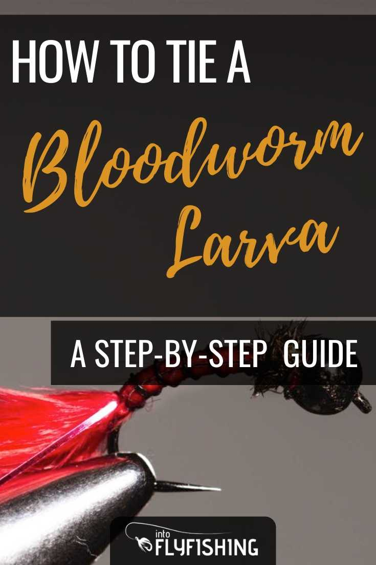 How To Tie A Bloodworm Larva A Step-By-Step Guide