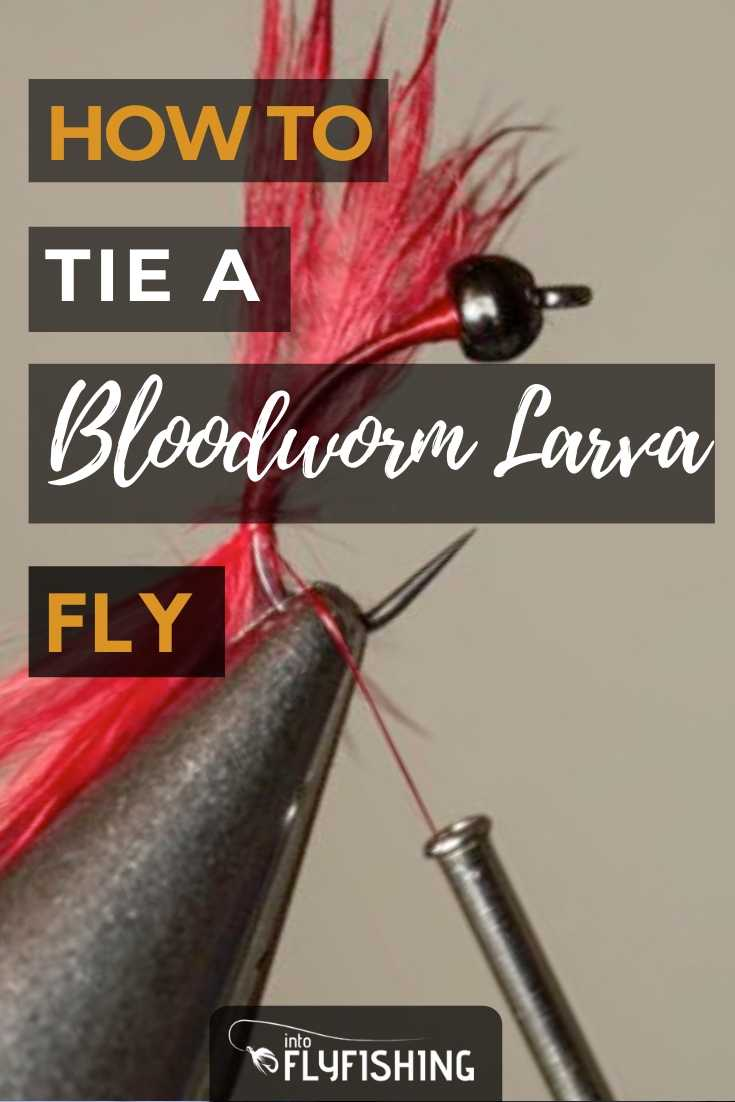 How To Tie A Bloodworm Larva Fly