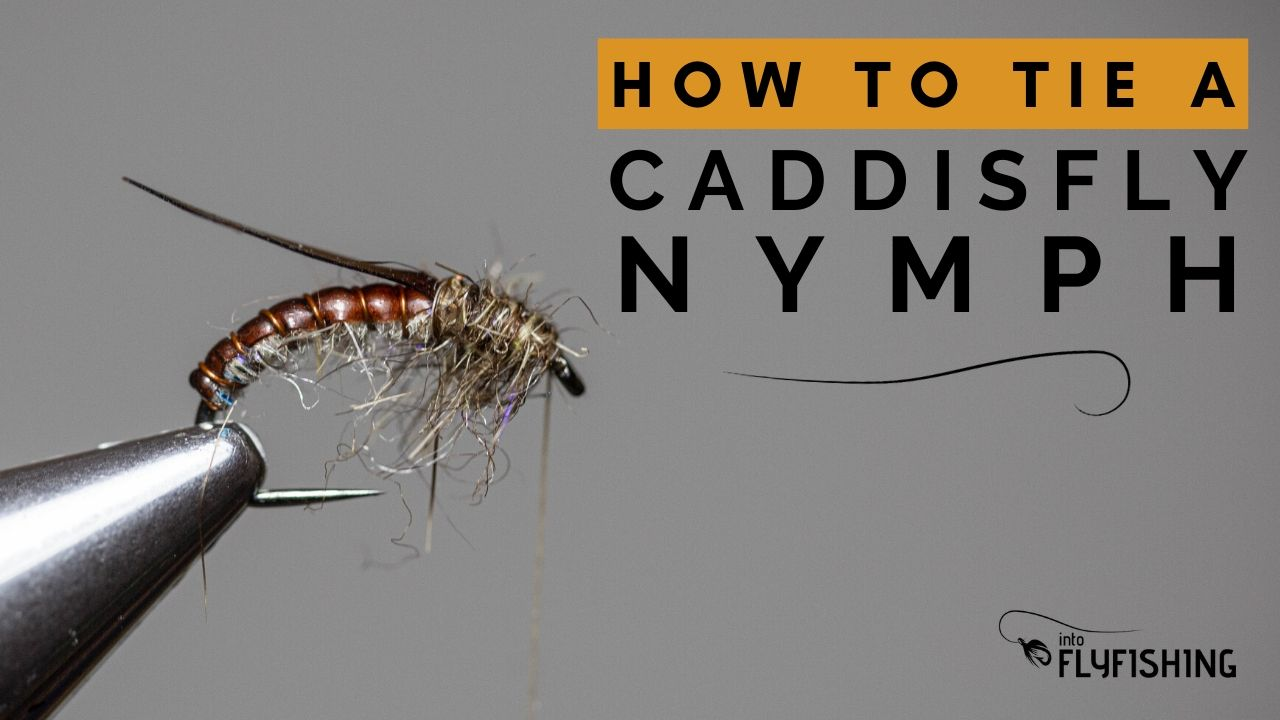 How To Tie A Caddisfly Nymph Fly