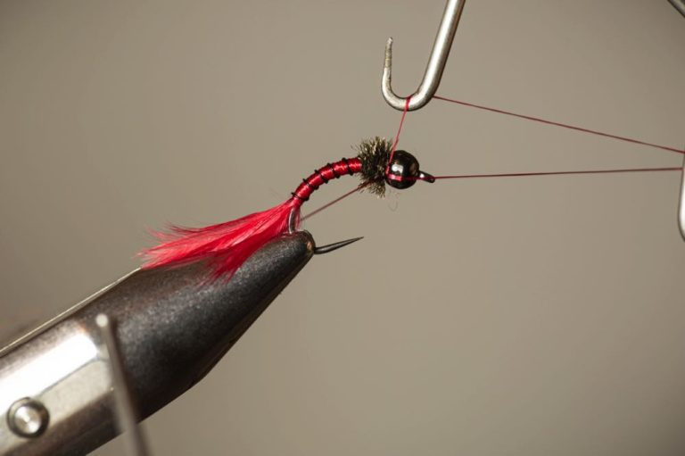 How To Tie a Bloodworm Larva finish the fly