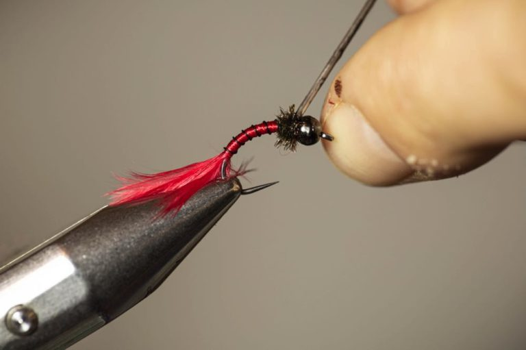 How To Tie a Bloodworm Larva apply head cement