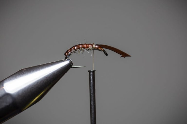 How To Tie a Caddis Fly Nymph Step11