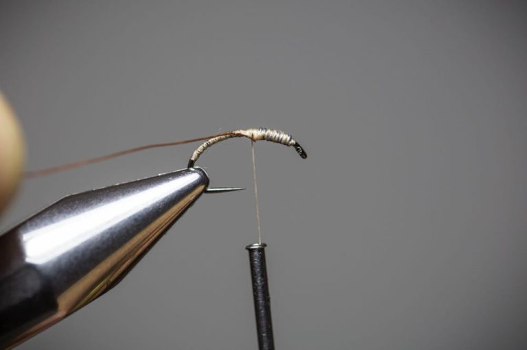 How To Tie a Caddis Fly Nymph Step7