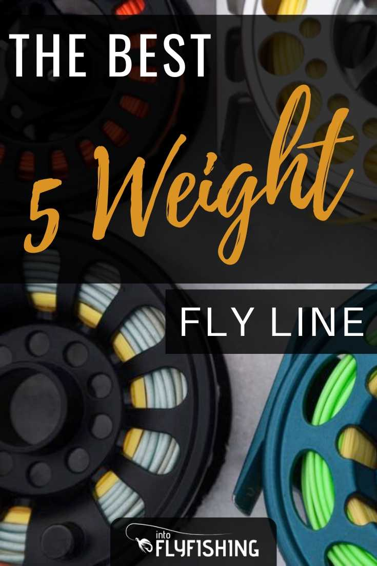 The Best 5 Weight Fly Line