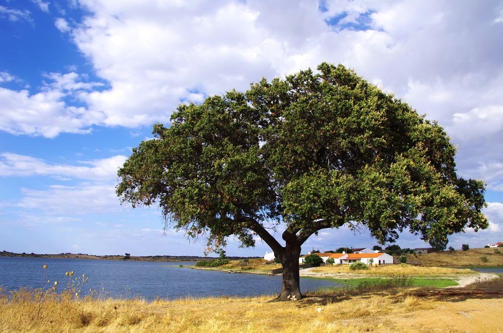 Alqueva portugal