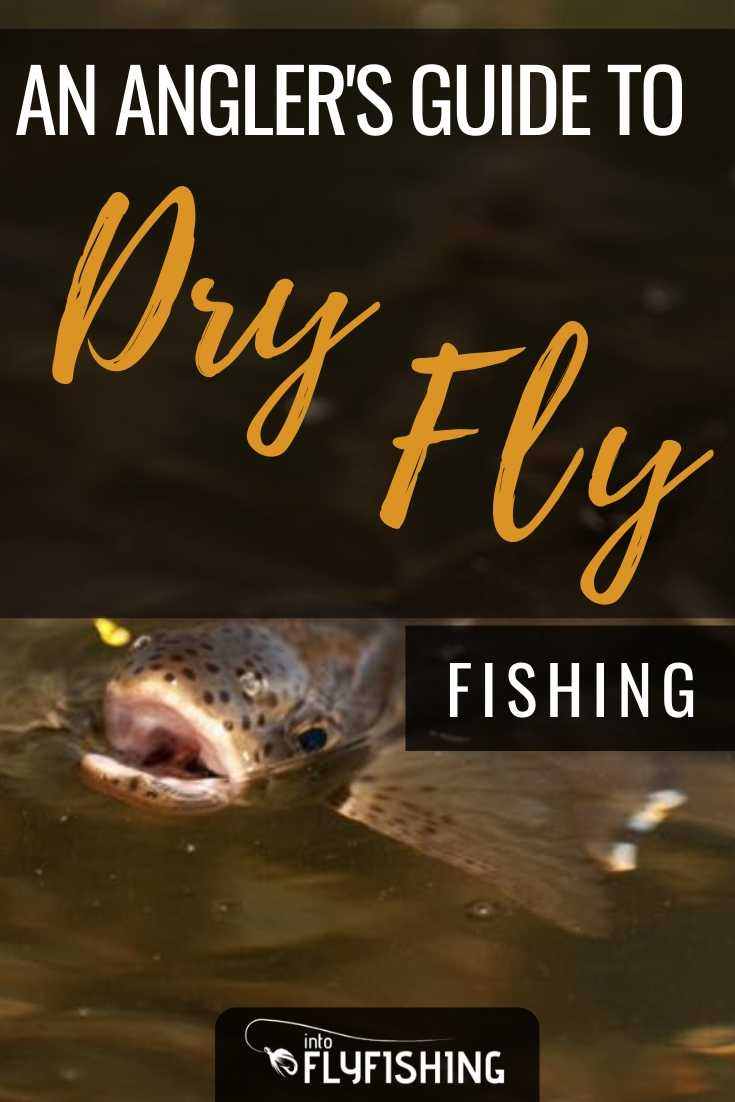 An Angler's Guide To Dry Fly Fishing