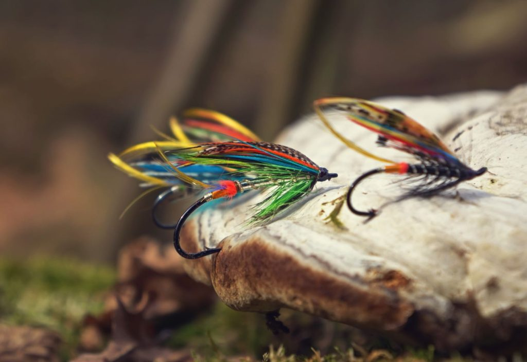 Best Salmon Flies - Featured Image